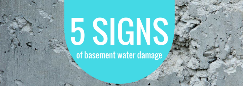S1E: Basement and Foundation Damage Warning Signs | Source